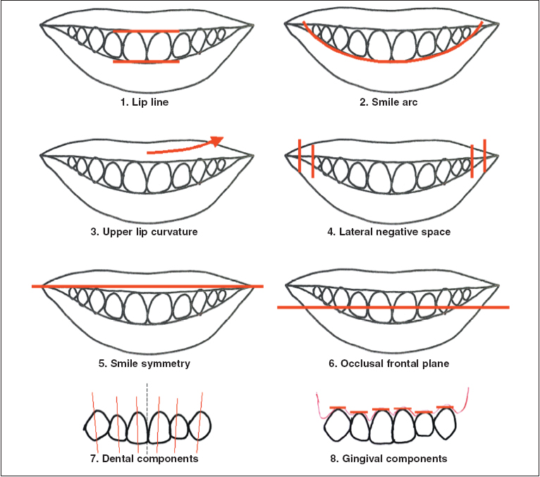 Overview The Eight Components Of A Balanced Smile Jco Online